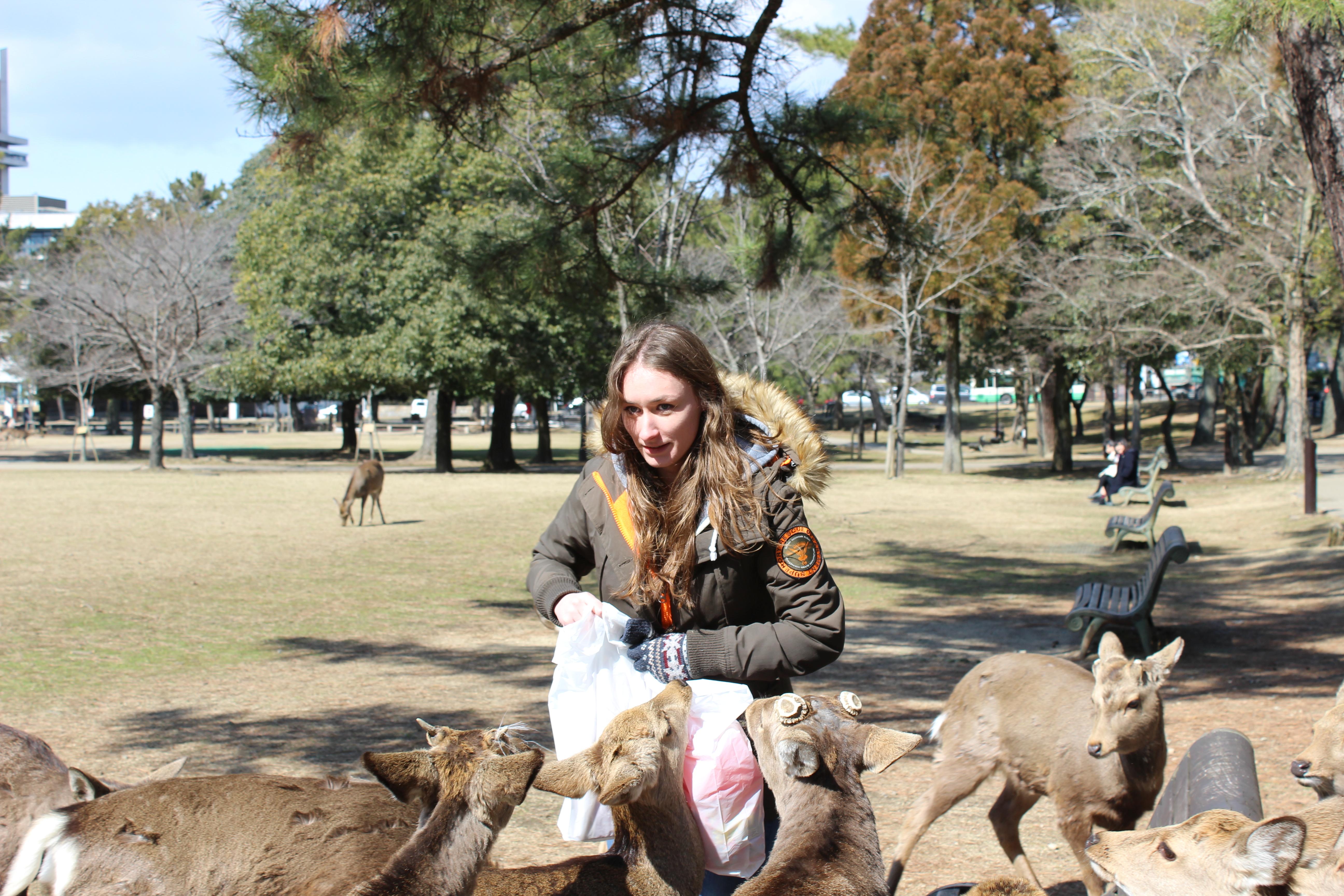 Sarah getting scaread of the deer