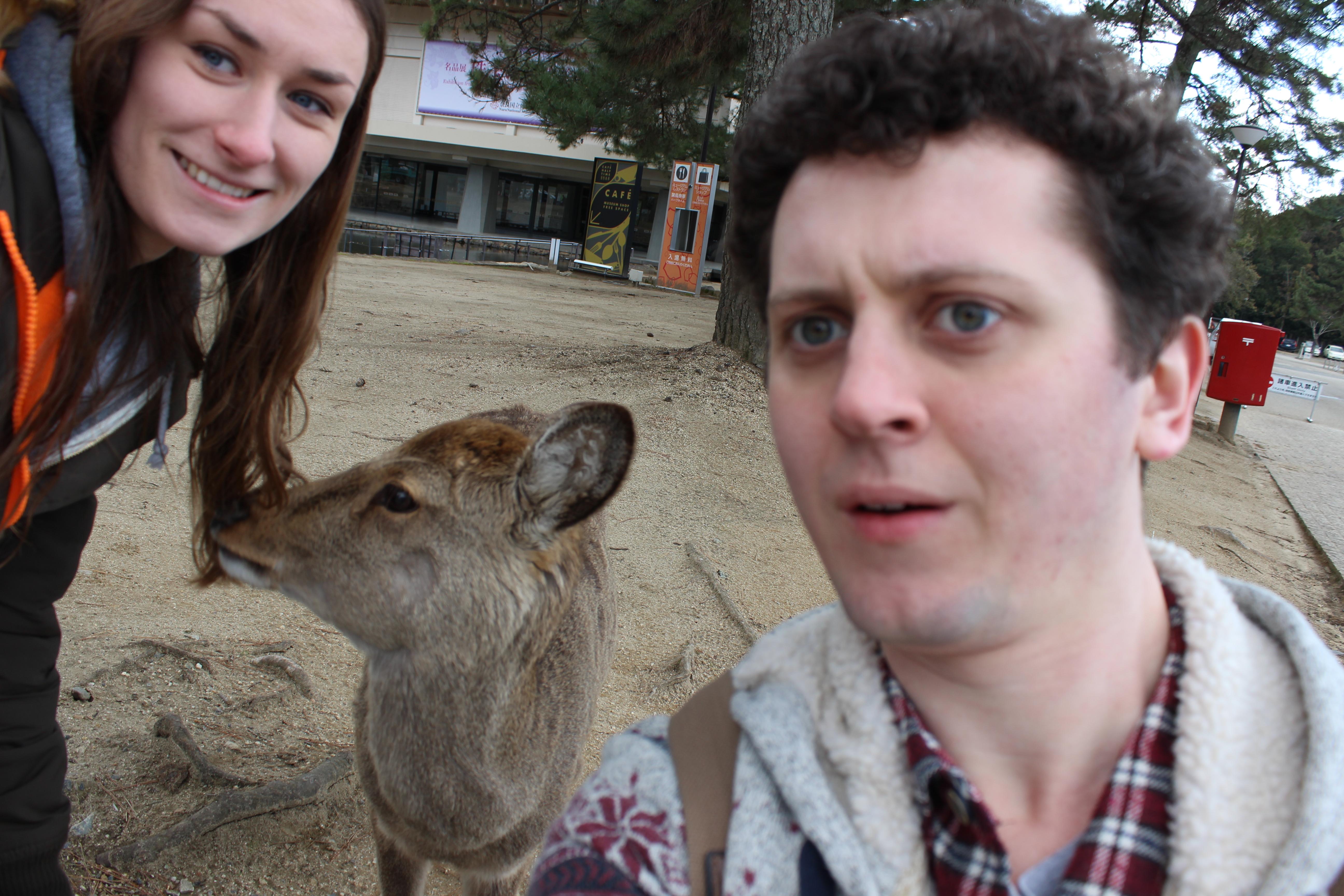 A deer selfie